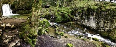 Toneel waterval in bos Royalty-vrije Stock Afbeeldingen