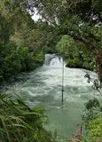 Toneel zwembad in wilde rivier royalty-vrije stock fotografie