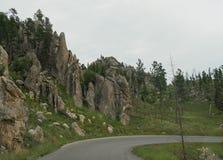 Toneelaandrijving op Naaldenweg, Custer State Park, Zuid-Dakota stock foto
