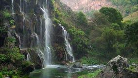 Toneelaard van mooie waterval en pool van zoet water met groene seaplant stock videobeelden