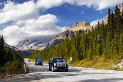 Toneelbergweg, Icefield-Brede rijweg met mooi aangelegd landschap, Canadese Rotsachtige Bergen stock afbeelding