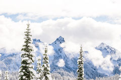 Toneeldiemening van berg met sneeuw wordt behandeld Stock Foto's