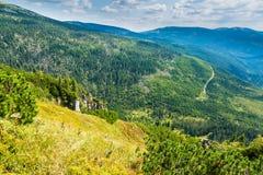 Toneelgezicht van Tsjechische reuzebergenvallei en net bos bij de zomer stock foto