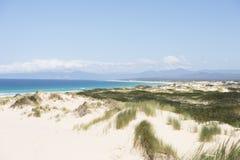 Toneelkustbaai van Branden Tasmanige, Australië royalty-vrije stock fotografie