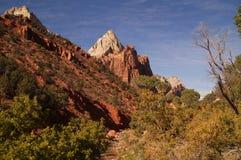 Toneellandschap in het nationale park van Zion, Utah, de V.S. Royalty-vrije Stock Afbeeldingen