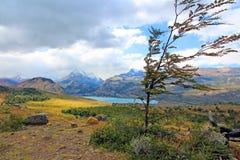 Toneellandschap in Patagonië Royalty-vrije Stock Foto's