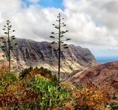 Toneellandschap van bergvallei Royalty-vrije Stock Fotografie
