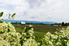 Toneellandschap van Elkton, Virginia rond Nationale Shenandoah Stock Fotografie