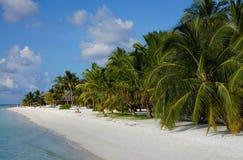 Toneellandschap van zonnige tropische oceaanstrandoever met wit zand, kokosnotenpalmen en blauwe hemel Idyllisch landschap van ov Royalty-vrije Stock Afbeeldingen