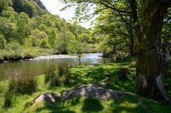 Toneelmening onderaan een kalme rivier onder de bomen, die overdwars aan de beboste heuvels kijken royalty-vrije stock afbeelding