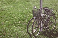 Toneelmening twee fietsen die zich op groen gras bevinden achtergrondconceptenvrije tijd Het stemmen met lawaai stock foto