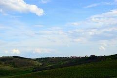 Toneelmening van de groene gebieden en de bossen tegen blauwe hemel met wolken stock afbeeldingen