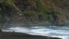 Toneelmening van de kust van het strand stock footage