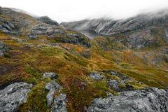 Toneelmening van hierboven over de bergen en een meer in een vallei op Lofoten-Eilanden in Noorwegen stock afbeelding