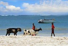 Toneelmening van Masai Beach Boys op een Keniaans strand Stock Foto