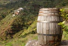 Toneelmening van Masca, Tenerife, Canarische Eilanden, Spanje Royalty-vrije Stock Foto's