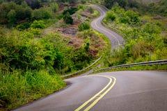 Toneelmening van smalle curvy weg en landelijk landschap, Kauai, Hawaï royalty-vrije stock foto's