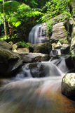Toneelmening van waterval in bos Stock Afbeelding