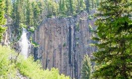 Toneelpalissadedalingen die over steile helling in een weelderig bos van Montana stromen Stock Afbeeldingen
