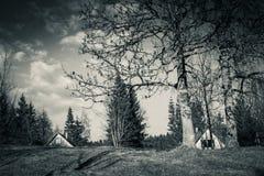 Toneelplattelands houten chalet in julian bergen van alpen in zwart-wit, uskovnica, Slovenië stock foto's