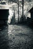 Toneelplattelands houten chalet in julian bergen van alpen in zwart-wit, uskovnica, Slovenië stock foto