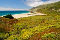 Toneeluitzicht op Route 1 van de Staat van Californië Stock Fotografie