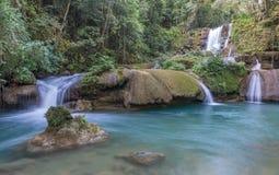 Toneelwatervallen en weelderige vegetatie in Jamaïca Royalty-vrije Stock Fotografie