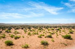 Toneelwoestijnlandschap met rood zand en groene struiken royalty-vrije stock afbeelding