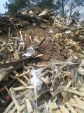 Toneladas de madera recicladas foto de archivo