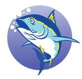 Tonfisk Royaltyfri Bild