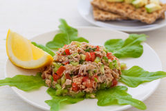 tonfisk för främre sallad för fokus selektiv royaltyfri fotografi