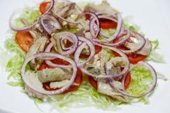 Tonfisk- och löksalladdetalj ny mat royaltyfria foton