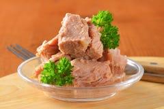 tonfisk på burk royaltyfri foto