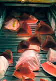 Tonfisk på den Tsukiji marknaden i Japan Royaltyfria Foton