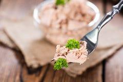 Tonfisk på en gaffel fotografering för bildbyråer