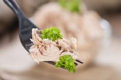 Tonfisk på en gaffel royaltyfria foton