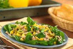 Tonfisk-, sweetcorn- och olivgrönsallad Royaltyfri Bild
