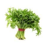 Tong hao,  edible chrysanthemum Royalty Free Stock Image