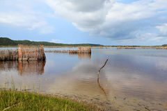 Tonga fish traps. Fish traps build by the Tonga people from Kosi Bay, South Africa. Fish are trapped and then speared Stock Photos