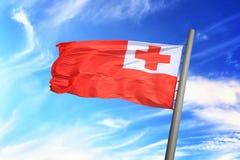 Tonga flagga Royaltyfria Bilder