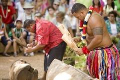Tongan Drummers Royalty Free Stock Image