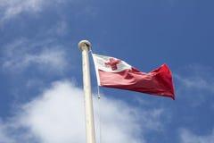 Tongan flag Stock Photo