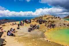 Tongariro高山横穿-鲜绿色湖 库存图片