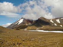 Tongariro高山横穿 免版税库存照片