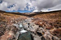 tongariro национального парка заводи Стоковые Изображения
