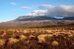 tongariro национального парка ландшафта Стоковые Изображения RF