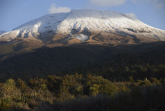 Tongariro Stock Photos