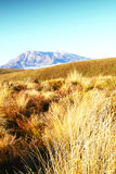 Tongariro Royalty Free Stock Image