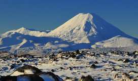 Tongariro National Park. Mount Ngauhuroe stock image