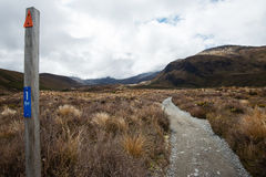 Tongariro National Park in New Zealand Stock Photos